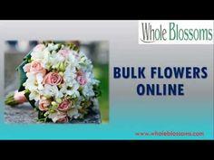Bulk Flowers Online, Wedding Decorations, Blossoms, Celebrations, Flowers, Wedding Decor, Florals