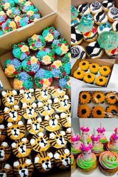 Cupcakes for everyone! Order Cake, Chocolate Mousse Cake, Cake Business, Little Cakes, Occasion Cakes, Sponge Cake, Delicious Chocolate, Edible Art, How To Make Cake