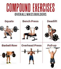 The Essential 8: Multi-joint Exercises & Training Splits That Will Get You Ripped - GymGuider.com