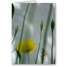 Poppies & shade (3) card