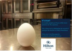 This is how we're celebrating the arrival of spring in the kitchen at Hilton Pearl River. (Can you tell we're excited?)  #springishere #firstdayofspring #eggs #funwitheggs #eggrecipes #eggprojects #patience #the incredible edible egg