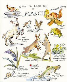 Claire Fletcher Artist. What to look for in March