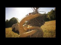 Radiohead - Weird Fishes -  by Tobias Stretch - YouTube