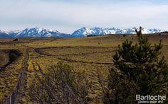 Estepa patagonica. De fondo: la cordillera de los Andes