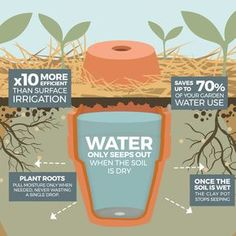 How to make your garden drought proof, using unglazed clay pots. - The Permaculture Research Institute Haus&Co How to make your garden drought proof, using unglazed clay pots. - The Permaculture Research Institute
