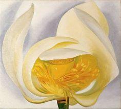 Georgia Totto O'Keeffe (1887-1986) White Lotus (1939) oil on canvas 20 x 22 in, Muscatine Art Centre, Iowa, USA
