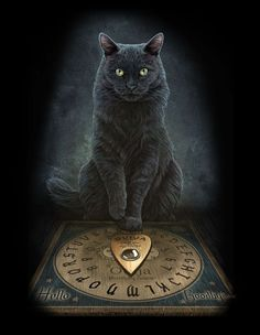 Black Cat Wall Plaque Art Print by Lisa Parker Master's Voice Ouija board Kitty Wall Plaque