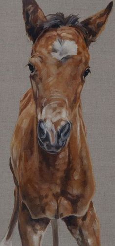 "'I'm Up' Original Oil on Natural Linen 24x24"" Foal Painting by Equine Artist Tony O'Connor whitetreestudio.ie"