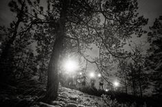 Night orienteering - click for more on my website. Photo Essay, Finland, Fine Art, Website, Night, Prints, Photography, Outdoor, Outdoors