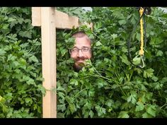 Does Parsley Grow in ZipGrow towers? You be the judge! (Hint: Heck yea it does!)- YouTube