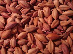 Health benefits of pili nuts