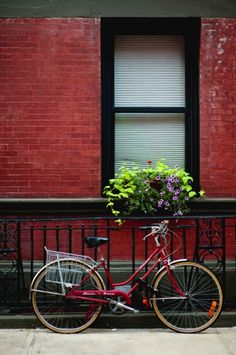 new york cycle via @ Snap Lane