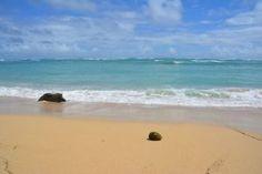 O, ahu, Hawaii <3 http://ulstrups-pusterum.dk/hawaii-oahu/