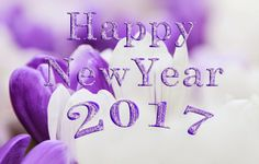 Here we are providing Happy New Year Wishes for whatsapp happy new year 2017 sms, Happy New Year Messages, New Year Wishes, New Year Wishes Happy New Year Happy New Year Quotes, Happy New Year Images, Happy New Year Wishes, Happy New Year Greetings, Quotes About New Year, Greetings Images, New Year Wishes Images, New Year Pictures, Happy New Year Wallpaper