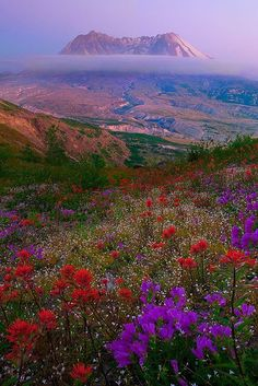 Monte Santa Helena, Estado de Washington, EUA  by Kevin McNeal