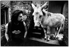 Picture made by Corbijn; Bono meets the donkey
