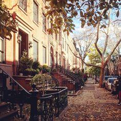 Brooklyn Brownstones by @jdawsey1