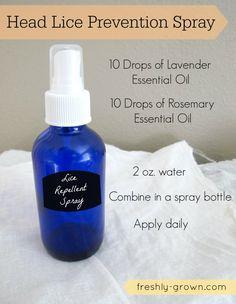 Detox Your Home Blogger Series: Head Lice Prevention Spray