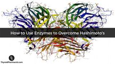 Using enzymes can help with overcoming symptoms of Hashimoto's; including fatigue, hair loss, and infections as well as reducing thyroid antibodies