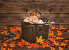 Haley Willingham Photography, Martinsburg WV Hagerstown MD, Winchester VA, Charles Town WV, Frederick MD, Berkeley County, Jefferson County, Northern Virginia, Western Maryland, Newborn Photographer, Baby Photographer, Studio Photographer, Newborn Girl, Fall