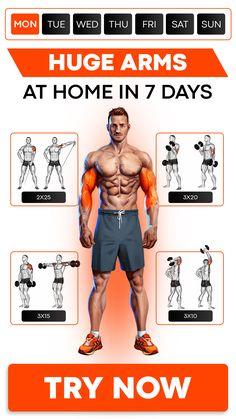 Arm Workout Men, All Body Workout, Gym Workout Chart, Workout Plan For Men, Workout Routine For Men, Gym Workout Videos, Gym Workout For Beginners, Biceps Workout, Workout Guide