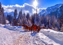 Síeljetek, kiránduljatok akár 6 napon át a varázslatos Magas-Tátrában! Background Screensavers, Names Of Artists, Winter Pictures, Winter Photography, Winter Landscape, Art Images, Winter Wonderland, Places To Visit, Horses