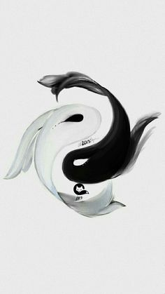 Yin Yang Tattoos, Tatuajes Yin Yang, Pisces Tattoos, Ying Yang, Yin Yang Art, Koi Tattoo Design, Koi Art, Fish Art, Carpe Koi Japonaise