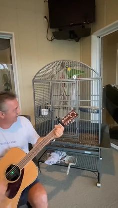 The most amazing singing parrot Funny Birds, Cute Birds, Pretty Birds, Cute Little Animals, Cute Funny Animals, Cute Cats, Animal Jokes, Funny Animal Memes, Tierischer Humor