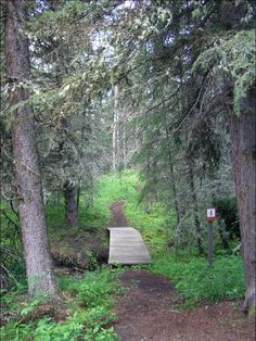 Brown Lowery provincial park, flat should be easy with toddler
