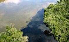 Vista aérea do encontro do Rio Teles Pires com o Rio Cristalino, Alta Floresta, Mato Grosso, Brasil