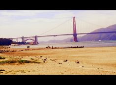 Welcome to the Bay Area<3