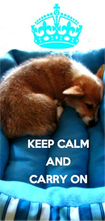 Keep Calm and Carry On slogans attached to pictures of my corgi, Avery… this is pretty much what I do.