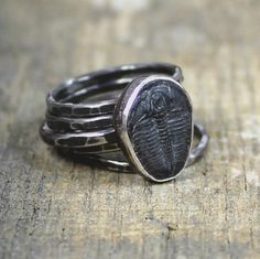 EstherEveMetalsmith - Trilobite Fossil Sterling Stacking Rings with Hammered Finish #etsymetalteam