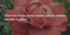 """Don't wait for the perfect moment, take the moment and make it perfect."""
