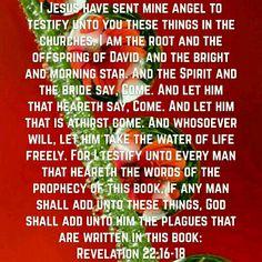 Revelation 22:16-18 (KJV)