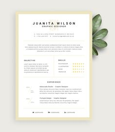 Simple Illustrator Resume Template Free Download By Everard