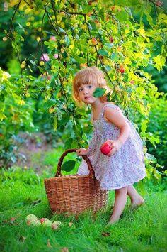 Gathering fruit.