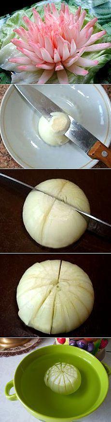 Crisantemo de cebollas