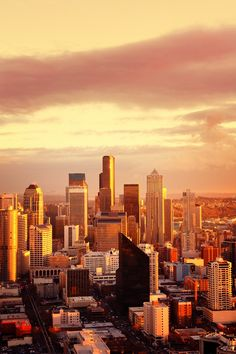 Discover our Top Insider's Picks before your trip to Seattle!