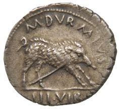 Denario - argento - Roma (19 a.C.) imp. Augusto - M DVRMIUS III VIR. un cinghiale vs.dx. trafitto da una lancia - Münzkabinett Berlin