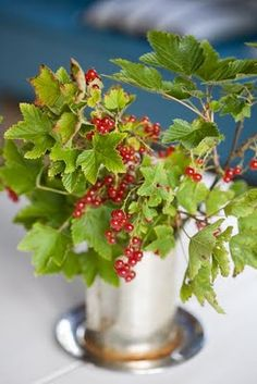 Sweden Minna Mercke Schmidt of Blomsterverkstad Edible beauty, Red currants in a vase