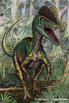 dilophosaurus | Dilophosaurus by ~ WillemSvdMerwe
