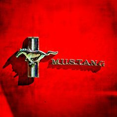 Mustang Photos serie 1 – Picture of Mustang : Ford Mustang Logo, Ford Mustang Shelby, Mustang Cars, Mustang Emblem, Car Hood Ornaments, Hell On Wheels, Classic Mustang, Mustang Fastback, Pony Car