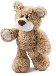 teddy bear nici