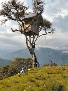 casa sull'albero elevata