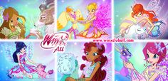 winx club season 7 pets - Google Search