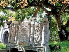 Cây nhãn tổ có tuổi thọ hơn 300 năm, tọa lạc tại chùa Hiến (Phố Hiến, Hưng Yên) chính là minh chứng chứng hùng hồn cho nguồn gốc của giống nhãn lồng đặc sản Hưng Yên ngày nay