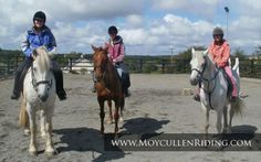 Trek your troubles away with Moycullen Riding Centre Connemara, Horse Riding, Trekking, Centre, Horses, Animals, Animais, Animales, Animaux