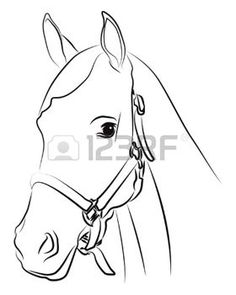 horse head: Horse head silhouette isolated on white