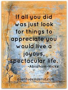Abraham Hicks - if all you did was just look for things to appreciate you would live a joyous, spectacular life Gratitude Quotes, Attitude Of Gratitude, Happiness Quotes, Compassion Quotes, Spirituality Quotes, Kindness Quotes, True Happiness, Great Quotes, Me Quotes